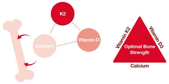 vitamin d k calcium