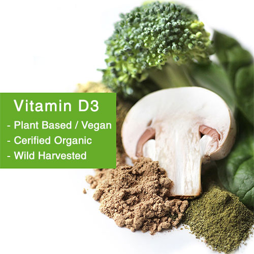 vitmain d3 plant based